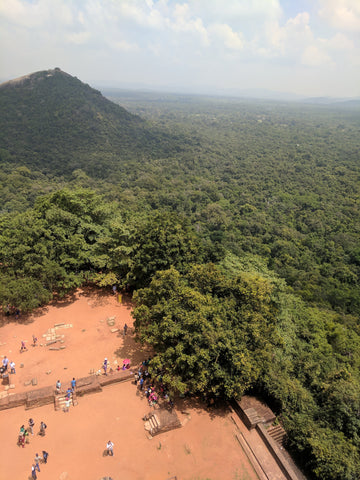 Sigiriya from the top looking down