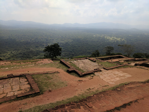 Sigiriya at the top