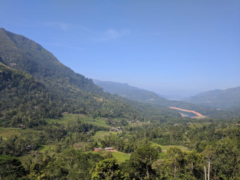 Nuwara Eliya Country-side