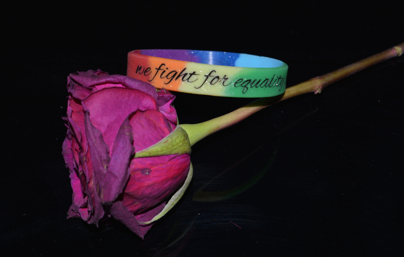 """we fight for equality, we fight for love."" Equality Bracelet ♥ - Underlying Beauty - 2"