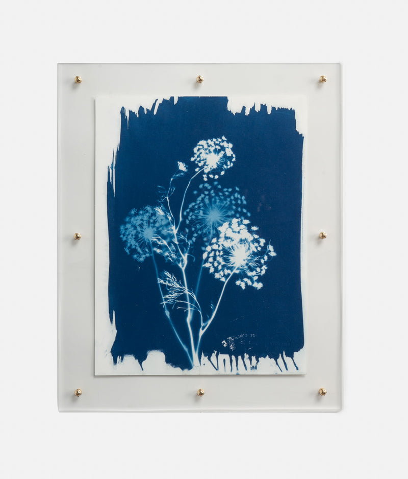 Acacia Print Blue and White Wall Art