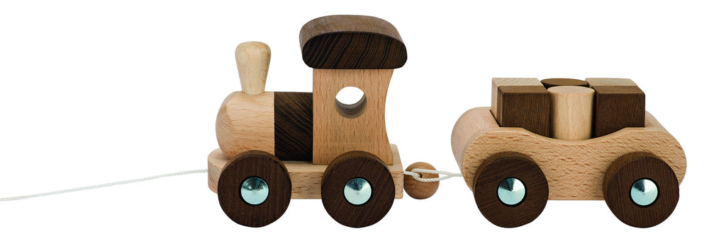 Goki Nature Train and Blocks