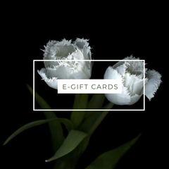 //cdn.shopify.com/s/files/1/1279/1577/collections/GIFT_CARD-16_medium.png?v=1588238036