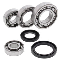 All Balls Differential Bearing & Seal Kit - REAR | 25-2017