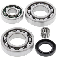 All Balls Differential Bearing & Seal Kit - REAR | 25-2018