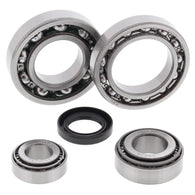 All Balls Differential Bearing & Seal Kit - REAR | 25-2019