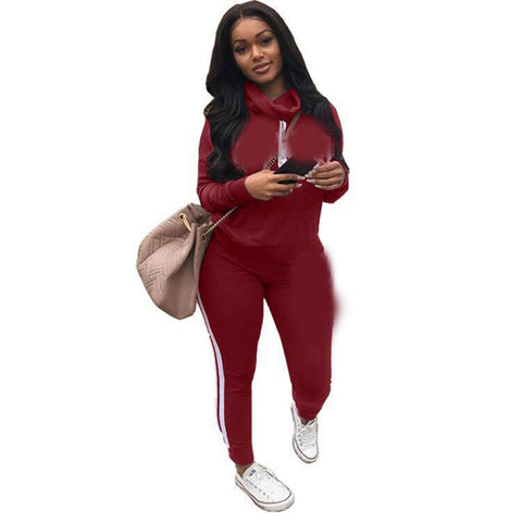 Solid Color Turtleneck High Neck Sweatshirt with Long Skinny Pants Women Two Pieces Set