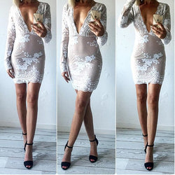 Beautiful Embroidery V Neck Short Bodycon Dress