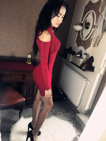 Turtle Neck Dew Shoulder Long-Dleeves Bodycon Dress