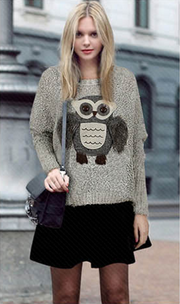 Knit Scoop Loose Pattern Owl Long Sleeves Sweater - Meet Yours Fashion - 1