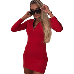 High Neck Zipper Decorate Short Bodycon Dress