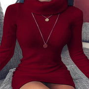 Turtleneck Bodycon Long Sleeve Sweater Dress