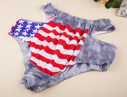 High Waist Sexy Hollow Out Halter American Flag Print Bikini Set - Meet Yours Fashion - 6