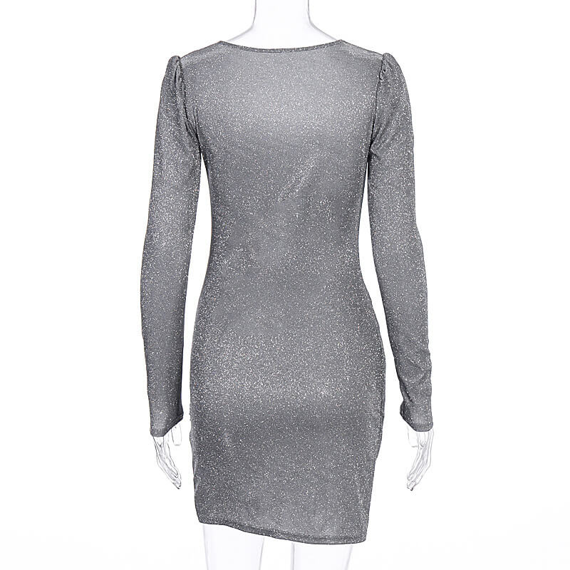 Bodycon Long Sleeve Sequin Party Dress