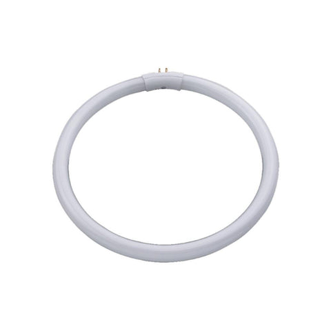 Daylight Replacement Bulb, Clearance, Circular