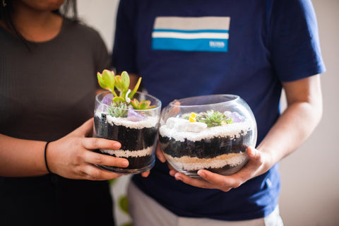 Couples at the Build Your Own Terrarium Bar