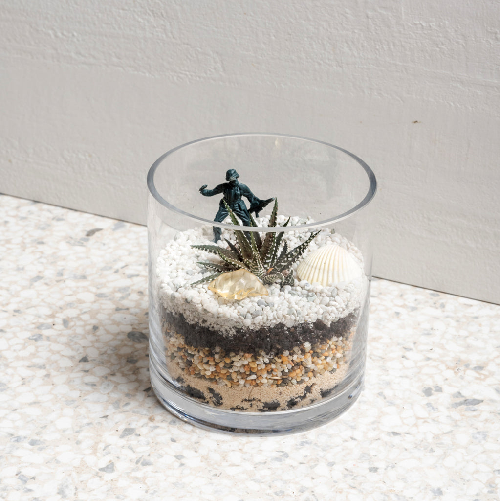 Succulent Terrarium Home Kit
