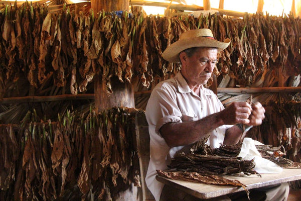 Tobacco making