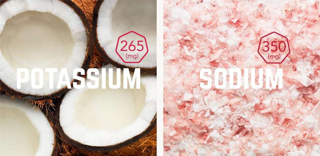 side by side background image of Coconuts and Himalayan Pink Salt with the words 'Potassium' and 'Sodium' written across the image