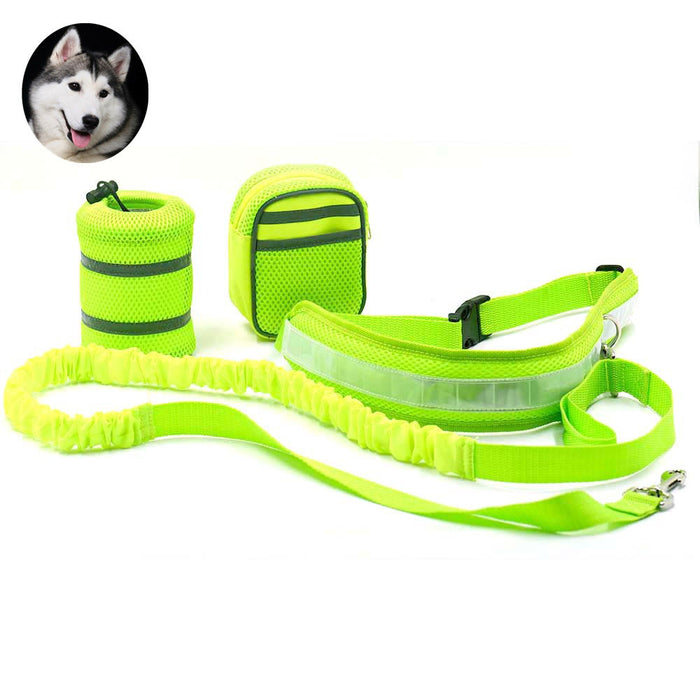 Lite - Two Handle Training Leash for Large Dogs - Heavy Duty Double Traffic Handle Lead