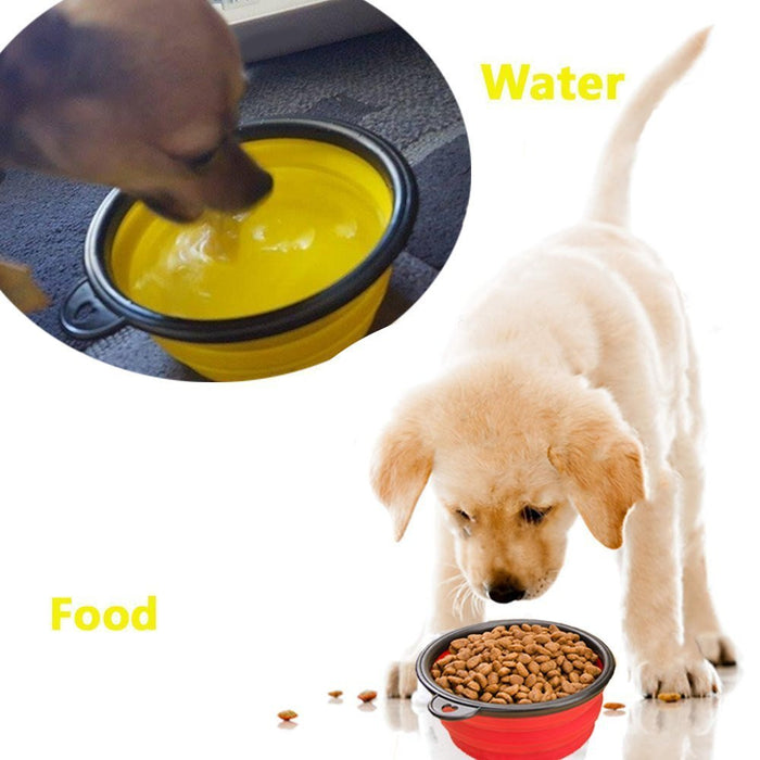 Large Size Collapsible Dog Bowl, Food Grade Silicone BPA Free FDA Approved, Foldable Expandable Cup Dish for Pet Cat Food Water Feeding Portable Travel Bowl Blue and Green Free Carabiner