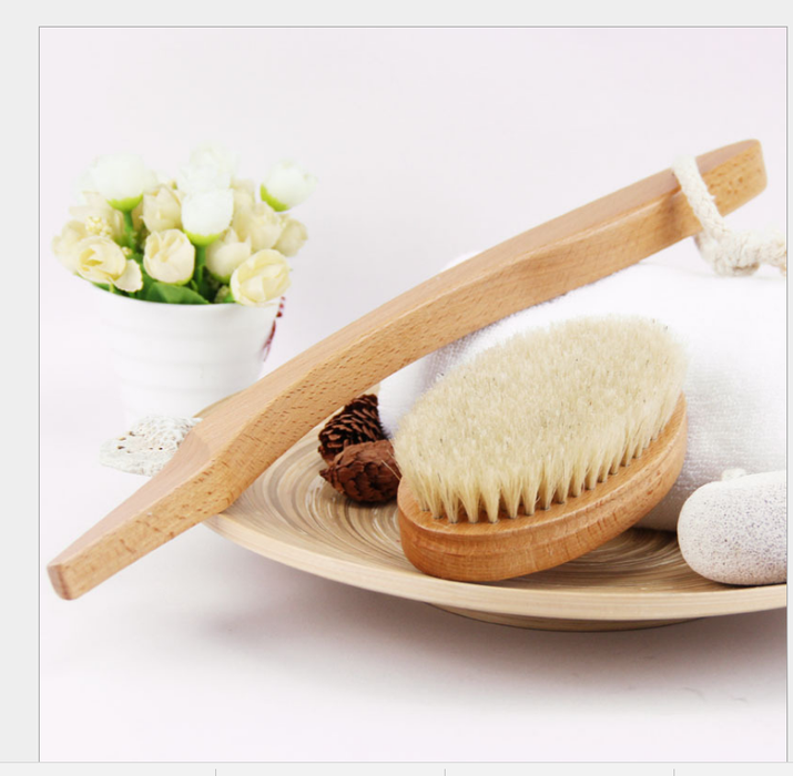 Bath Dry Body Brush-Natural Bristles Back Scrubber With Long Wooden Handle for Cellulite & Exfoliating