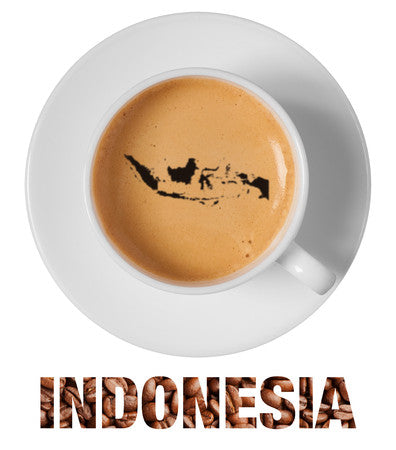 Indonesia RFA Organic Balinese Blue Moon Single Origin