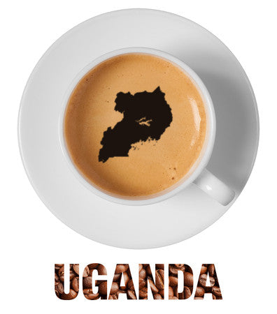 Uganda Single Origin (ORGANIC) RFA Sipi Falls