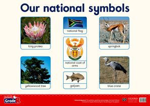 Oxford Grade R Poster 11: Our national symbols - Elex Academic Bookstore