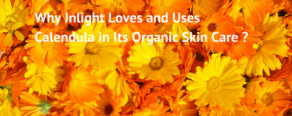 Why Inlight Loves and Uses Calendula in Its Organic Skin Care