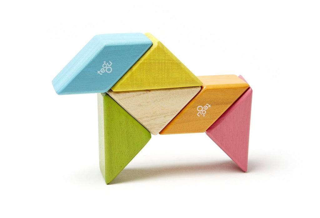 6 Piece Tegu Pocket Pouch Prism Magnetic Wooden Block Set, Tints Brilliantly simple and premium heirloom - SustainTheFuture - 4