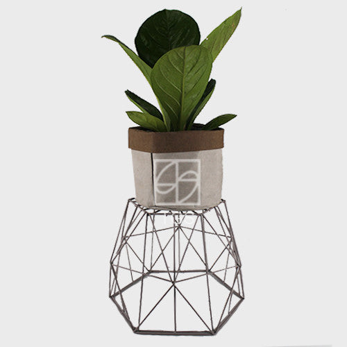 Fire phoenix in Handmade Taxier 31x25 geometry container Grey - Therapeutic Garden Sanctuary