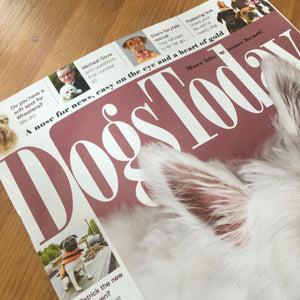 Wolfworthy is 'Six of the Best' according to Dogs Today