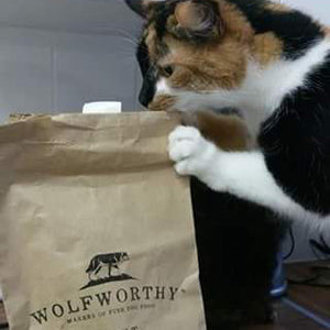 Wolfworthy Dog Food - So Good Even Cats Love it!