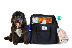 Our Sister Site WaggyCaddy.com (For Dogs!) Is Live!