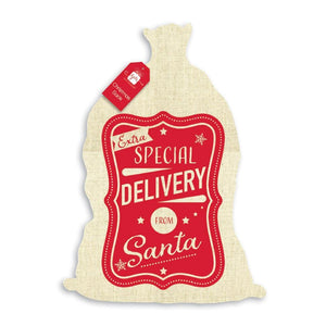Special Delivery Sack