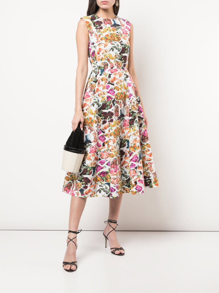 Adam Lippes Floral Cotton Faille Fluted Dress