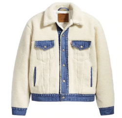 Levi's Ex Boyfriend Pieced Sherpa Trucker Jacket @ Hero Shop