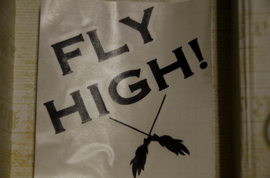 "Vinyl Sticker, Harry Potter Inspired Quidditch ""Fly High"" Car or Misc. Decal, White or Black"