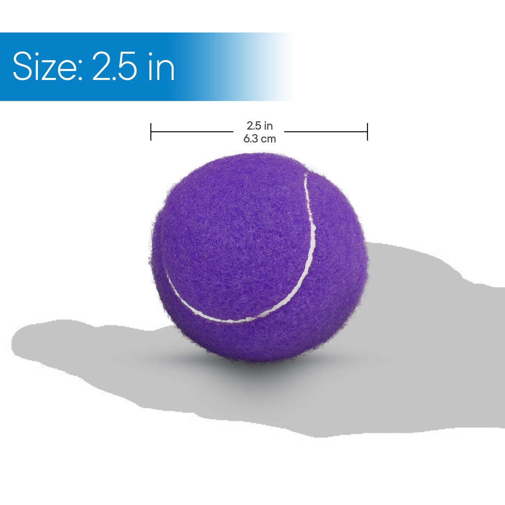 RMS Health - Purple Walker Glide Balls (4 pack)