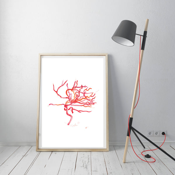 brain anatomy art print