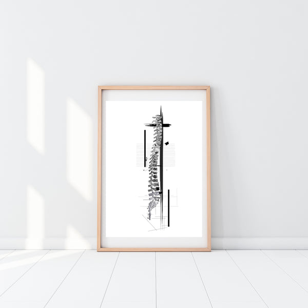 Spine Black and White Anatomy Art, Chiropractic Practice Art, Physical Therapy Art