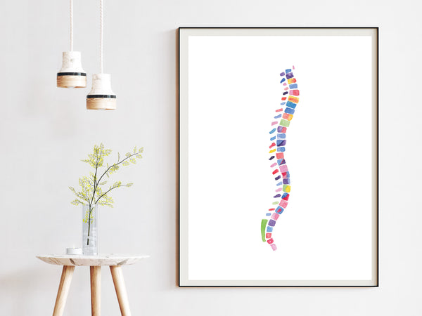 Spine Anatomy Abstract Chiropractor Art Print