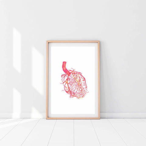 heart arteries wall art