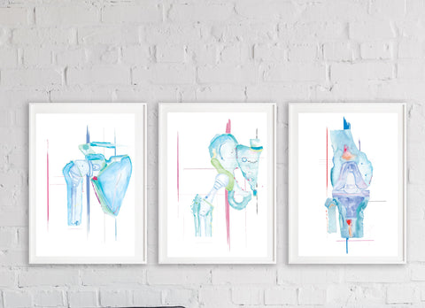 Orthopedic Surgery Artwork Set of Three: Knee, Shoulder and Hip Arthroplasty Print