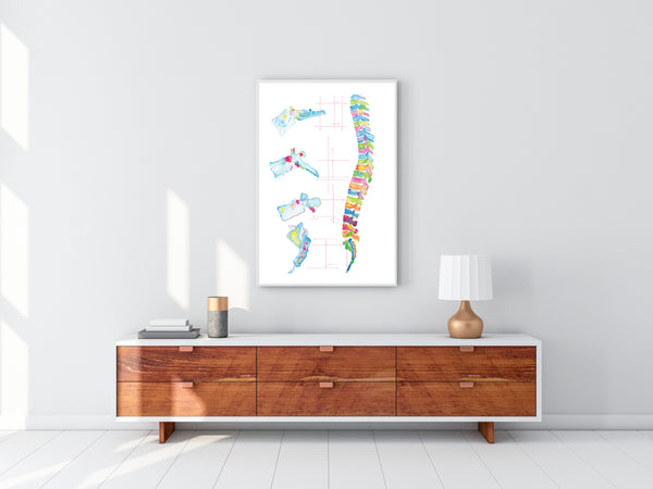 Spine Anatomy Abstract Art Print, Chiropractic Office Wall Art