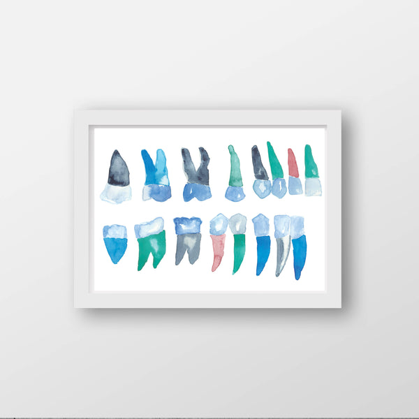 dental structures art print
