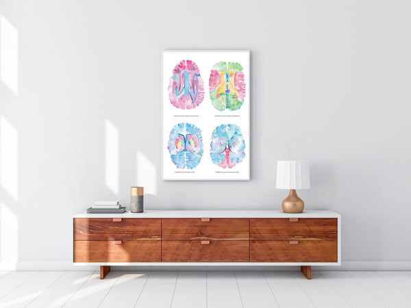 neurology art print