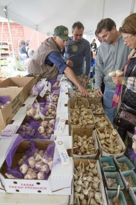 17TH ANNUAL LONG ISLAND GARLIC FESTIVAL
