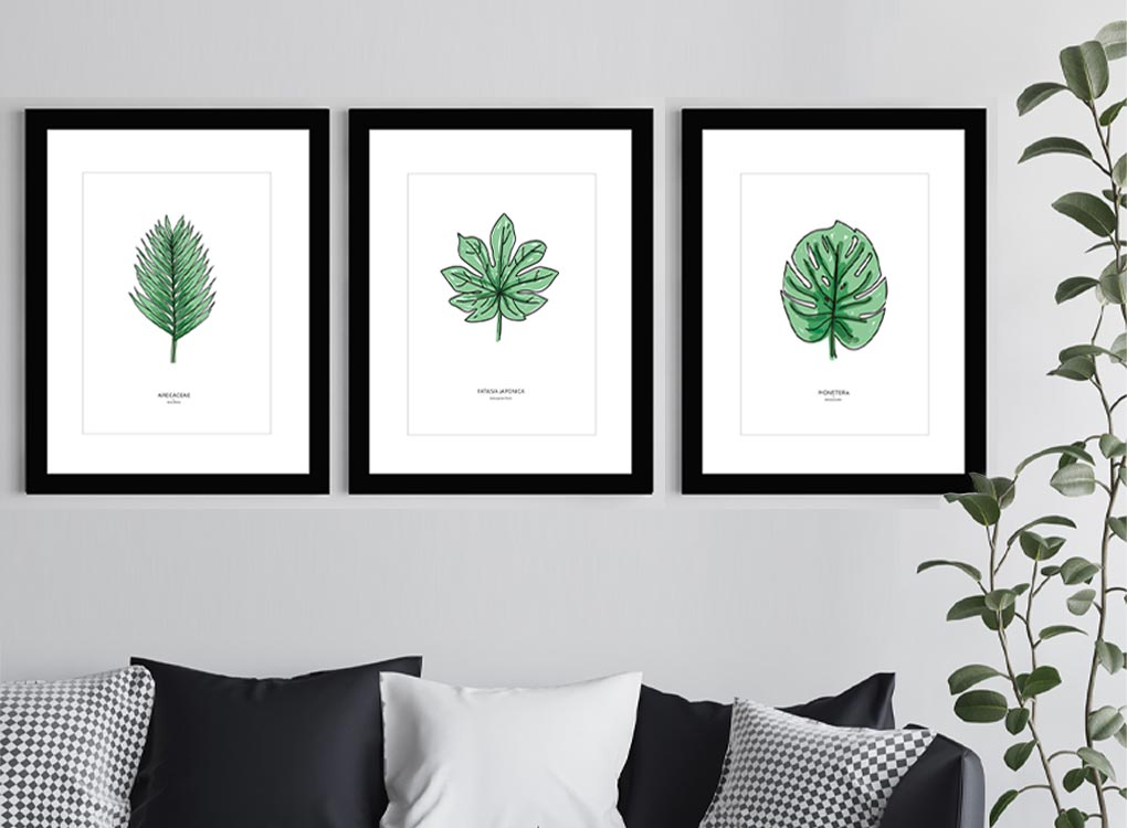 Leaf Fine Art Prints In Black Frames Hung Above a Sofa With Plant
